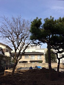 20140503kamikita08.jpg